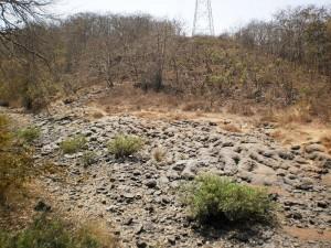 gandhipark2
