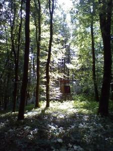 sommerfreizeit201211