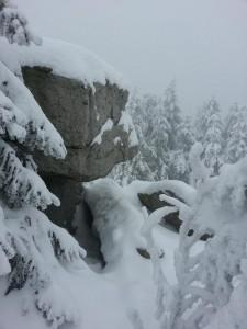 winterwonderland14