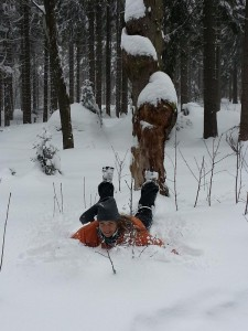 winterwonderland19
