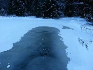 winterwonderland22