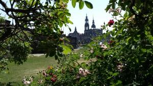 Dresden13
